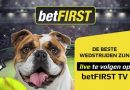 betFIRST review