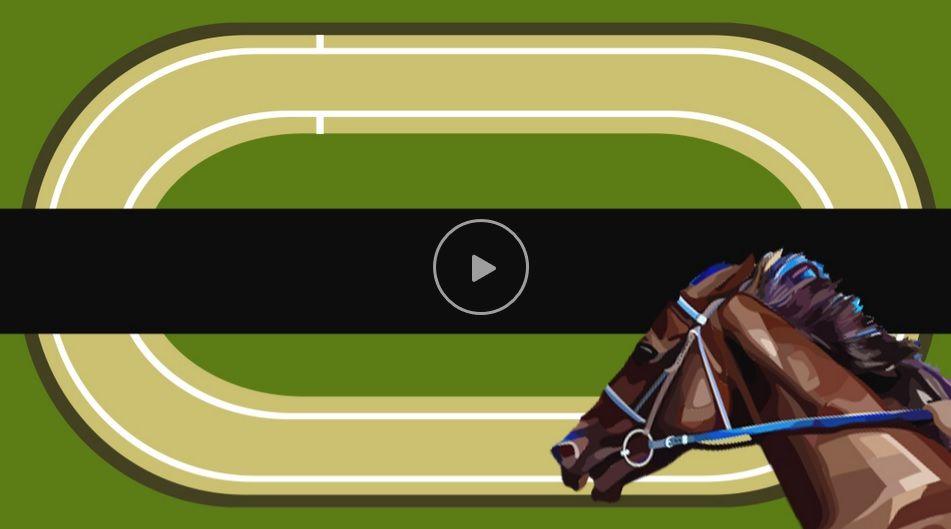 Paarden races